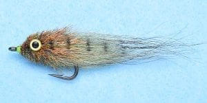 MUD MINNOW MOTTLED OLIVE #2