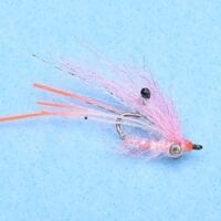 GHOST SHRIMP PINK #6